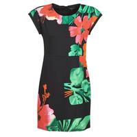 Textiel Dames Korte jurken Desigual PACIFIC OCEAN Multicolour