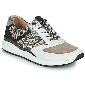 Schoenen Dames Lage sneakers JB Martin 1KALIO Wit / Beige / Zwart