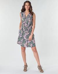 Textiel Dames Korte jurken Deeluxe NESSI Multicolour