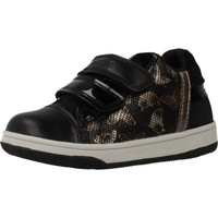 Schoenen Meisjes Lage sneakers Geox NEW FLICK GIRL Zwart