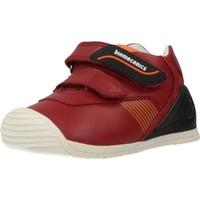 Schoenen Jongens Lage sneakers Biomecanics 191159 Rood
