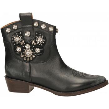 Schoenen Dames Enkellaarzen Coral  black