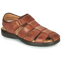 Schoenen Heren Sandalen / Open schoenen Fluchos DOZER Bruin