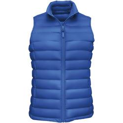 Textiel Dames Dons gevoerde jassen Sols WILSON BW FEATHERS Azul