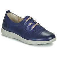 Schoenen Dames Lage sneakers Dorking SILVER Blauw