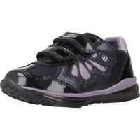 Schoenen Meisjes Lage sneakers Geox B TODO GIRL Violet