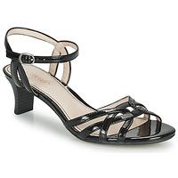 Schoenen Dames Sandalen / Open schoenen Esprit BIRKIN SANDAL Zwart