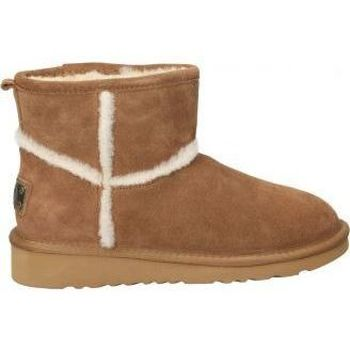 Schoenen Dames Snowboots Top3 9786 Marron