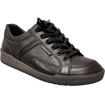 Schoenen Heren Lage sneakers Mephisto RODRIGO Donkerbruin leer