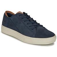 Schoenen Heren Lage sneakers Timberland ADV 2.0 CUPSOLE MODERN OX Blauw