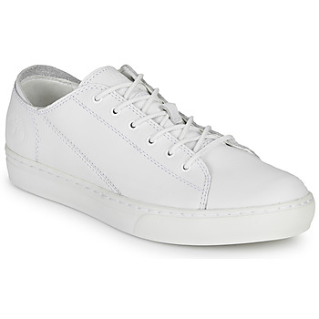 Schoenen Heren Lage sneakers Timberland ADV 2.0 CUPSOLE MODERN OX Wit