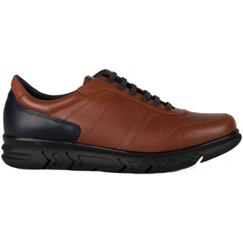 Schoenen Heren Lage sneakers Keelan 60578 BROWN
