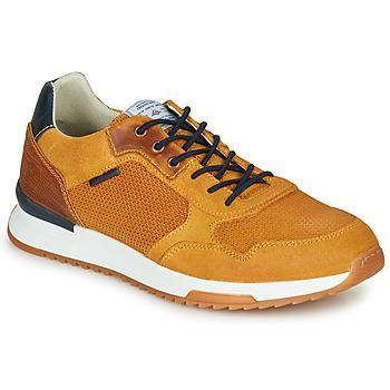 Schoenen Heren Lage sneakers Bullboxer TANIA Geel