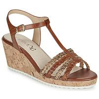 Schoenen Dames Sandalen / Open schoenen Caprice POUDALLE Cognac