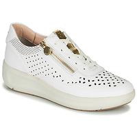 Schoenen Dames Lage sneakers Stonefly ROCK 10 Wit