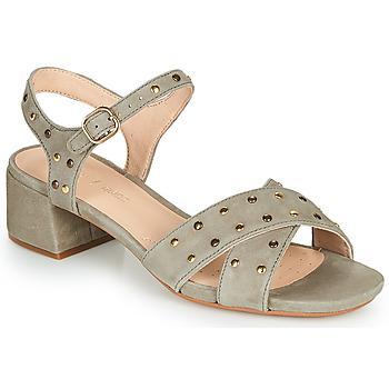 Schoenen Dames Sandalen / Open schoenen Clarks SHEER35 STRAP Taupe / Spijker