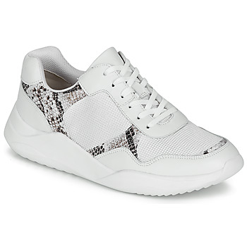 Schoenen Dames Lage sneakers Clarks SIFT LACE Wit / Python