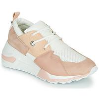 Schoenen Dames Lage sneakers Steve Madden CLIFF Roze