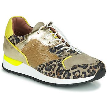 Schoenen Dames Lage sneakers Mjus CAST Kaki / Luipaard