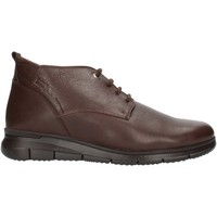 Schoenen Heren Laarzen 24 Hrs 10731 Brown