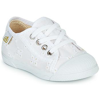 Schoenen Meisjes Lage sneakers Citrouille et Compagnie MALIKA Wit