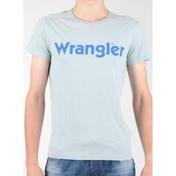 Textiel Heren T-shirts korte mouwen Wrangler S/S Graphic Tee W7A64DM3E grey