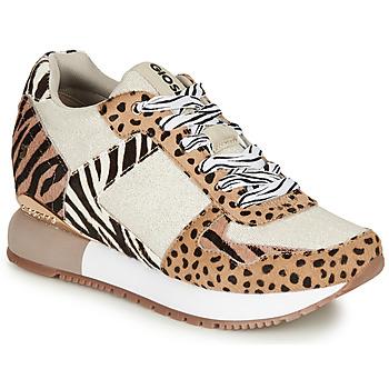 Schoenen Dames Lage sneakers Gioseppo BIKANER Beige / Bruin