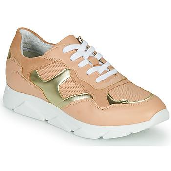 Schoenen Dames Lage sneakers André HAVILAH Roze