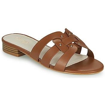 Schoenen Dames Sandalen / Open schoenen André PERPETUA Bruin