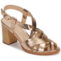 Schoenen Dames Sandalen / Open schoenen André PAYTON Goud