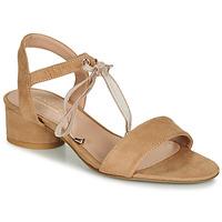 Schoenen Dames Sandalen / Open schoenen André PAULENE Beige