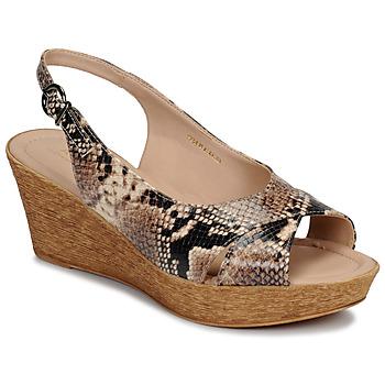 Schoenen Dames Sandalen / Open schoenen André DESTINEE Beige