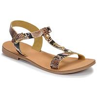 Schoenen Dames Sandalen / Open schoenen André DOMINOU Beige
