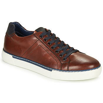 Schoenen Heren Lage sneakers André SHANN Bruin