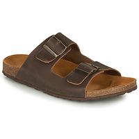 Schoenen Heren Sandalen / Open schoenen André VISON Bruin
