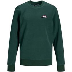 Textiel Jongens Sweaters / Sweatshirts Jack & Jones JORNORTH SWEAT CREW NECK Verde