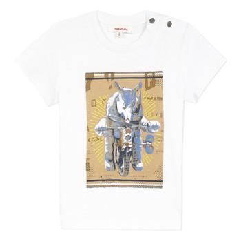 Textiel Jongens T-shirts korte mouwen Catimini LARIBI Wit