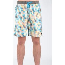 Textiel Heren Korte broeken / Bermuda's Quiksilver AQYJV00018-NGG6 Multicolor