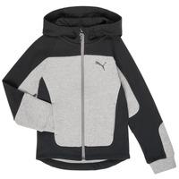 Textiel Jongens Sweaters / Sweatshirts Puma EVOST HOOD JKT Grijs
