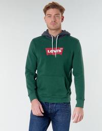 Textiel Heren Sweaters / Sweatshirts Levi's MODERN HM HOODIE Groen / Grijs