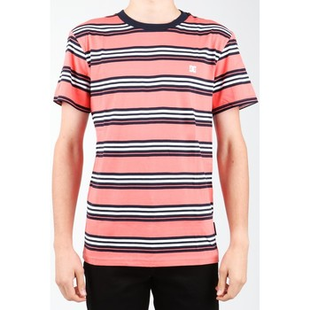 Textiel Heren T-shirts & Polo's DC Shoes DC EDYKT03373-MKE0 Multicolor
