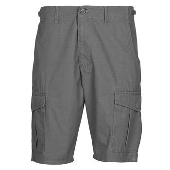 Textiel Heren Korte broeken / Bermuda's Lee CARGO SHORT FATIGUE Staal / Grijs