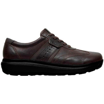 Schoenen Heren Lage sneakers Joya DAVID M BROWN