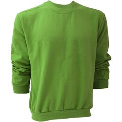 Textiel Heren Sweaters / Sweatshirts Anvil 71000 Groene appel