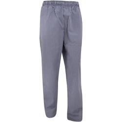 Textiel Trainingsbroeken Dennys White Check Marine/Wit