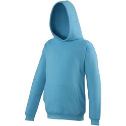 Textiel Kinderen Sweaters / Sweatshirts Awdis JH01J Hawaiiaans Blauw