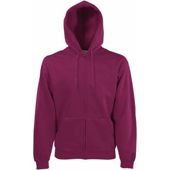 Textiel Heren Sweaters / Sweatshirts Fruit Of The Loom SS822 Bordeaux