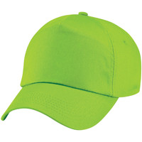 Accessoires Pet Beechfield B10 Kalk groen