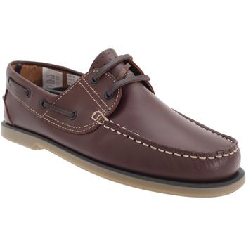 Schoenen Heren Bootschoenen Dek  Bruin Leder