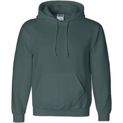 Textiel Heren Sweaters / Sweatshirts Gildan 12500 Bosgroen